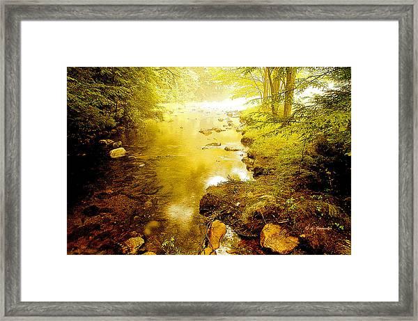 Mountain Stream Summer Framed Print