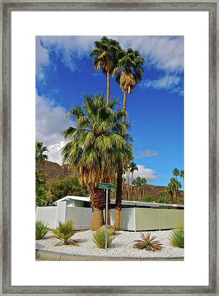 Mountains, Plants & Mid-century Home In Framed Print