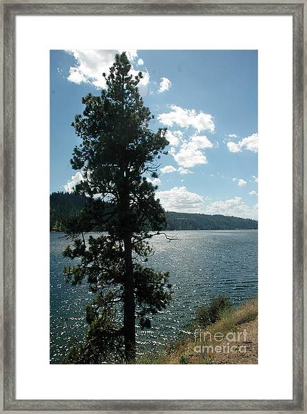 1012a Moyie Lake Bc Framed Print