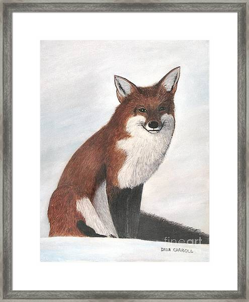 Mr Fox Framed Print by Dana Carroll
