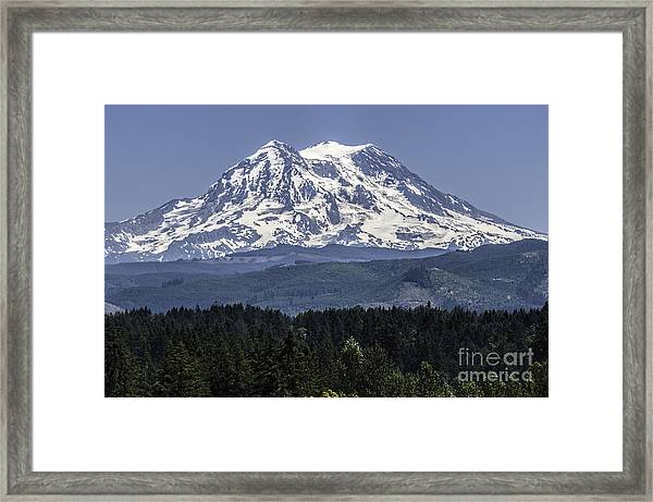 Mt Rainer In July Framed Print