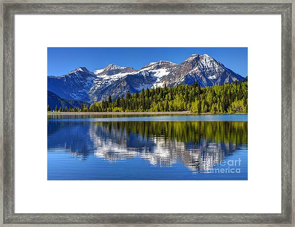 Mt. Timpanogos Reflected In Silver Flat Reservoir - Utah Framed Print