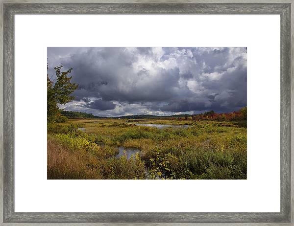 Mud Pond Clouds Framed Print