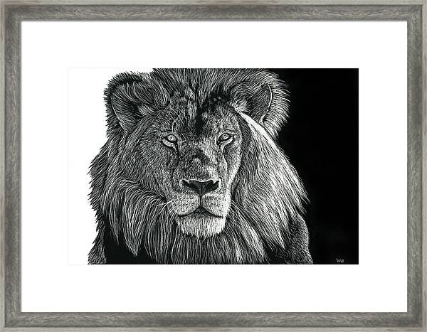 Mufasa Framed Print
