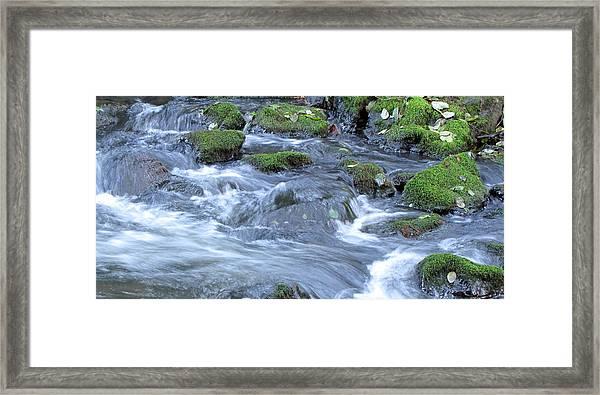 Muir Creek Framed Print