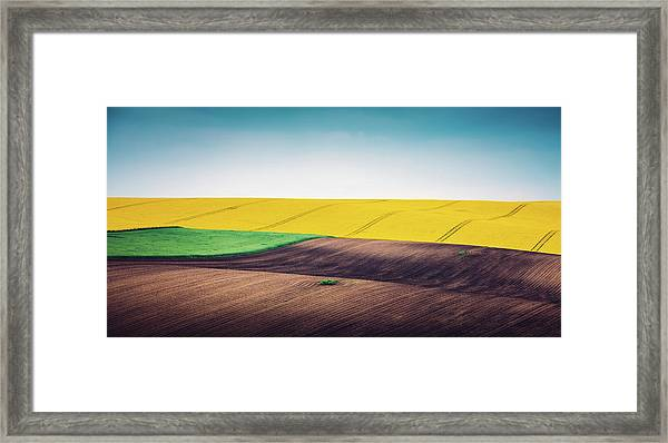 Multi Colored Panoramic Spring Field Framed Print