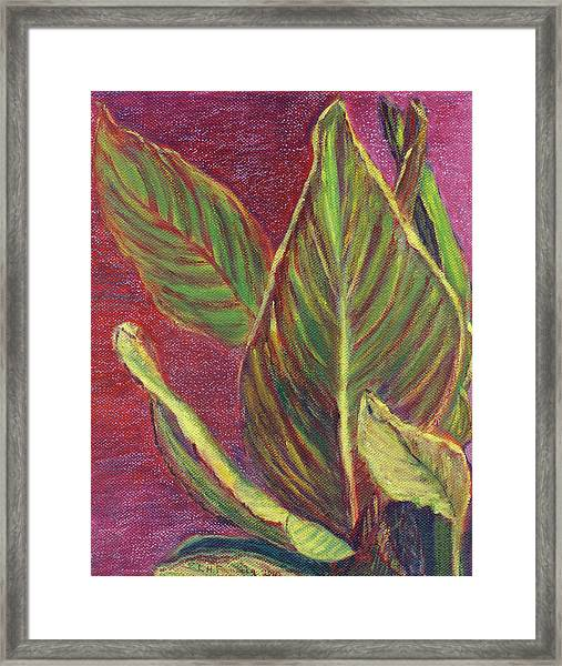 Multicolor Leaves Framed Print