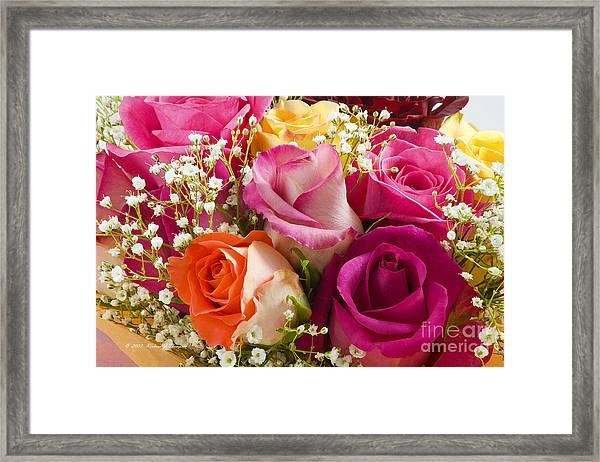 Multiple Roses Arrangement Framed Print