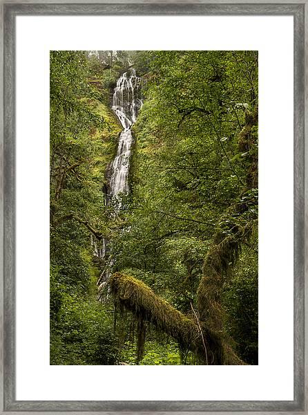 Munson Creek Falls Framed Print