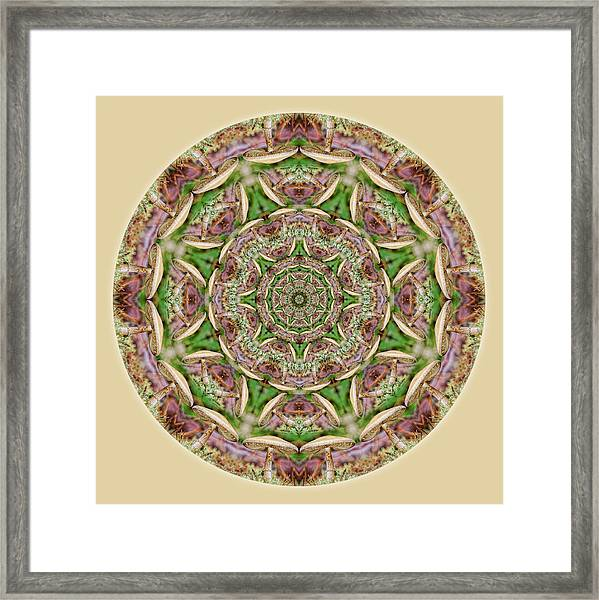 Framed Print featuring the digital art Mushroom Mandala 1 by Beth Sawickie