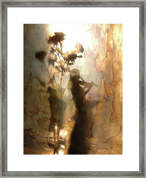 Music Of Light And Shadow Framed Print by Andrey Morozov