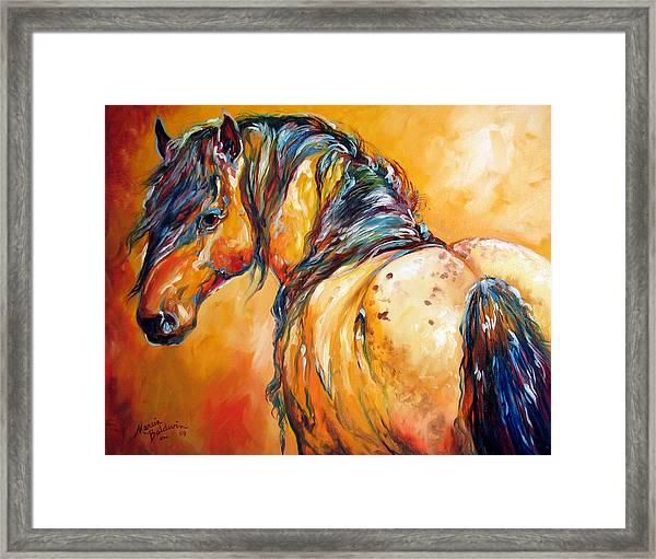 Mustang Appaloosa Framed Print