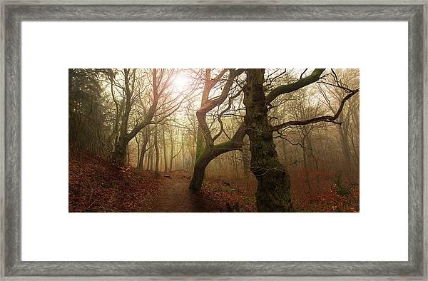 My Autumn Walk.. Framed Print