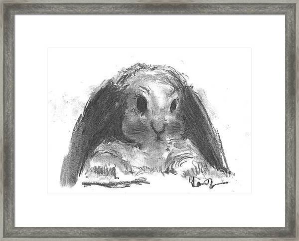 My Baby Bunny Framed Print