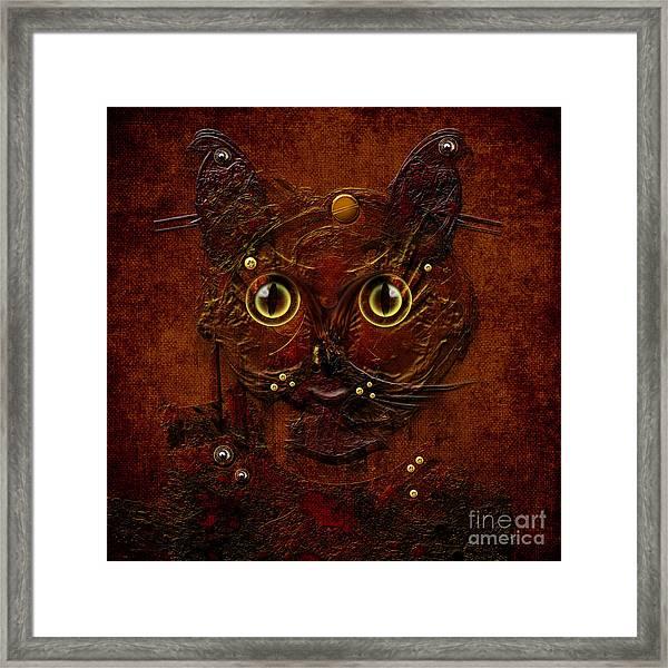 My Cat Framed Print