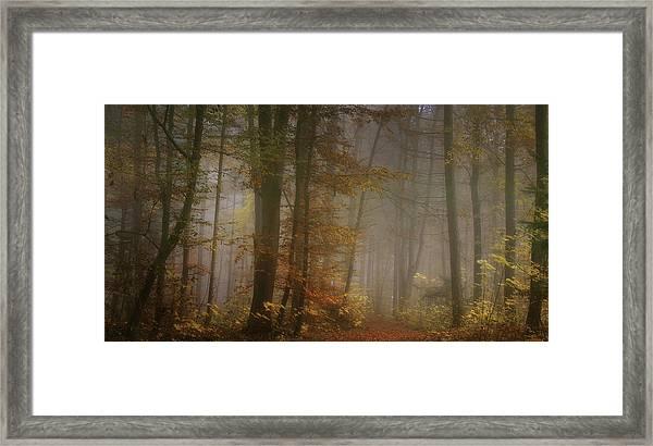 My November Framed Print