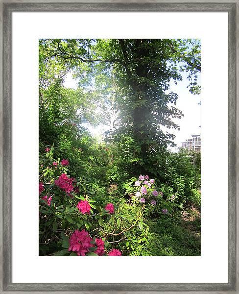 My Haven Framed Print