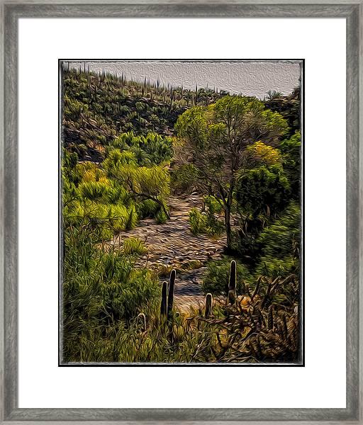 Mystic Wandering Framed Print