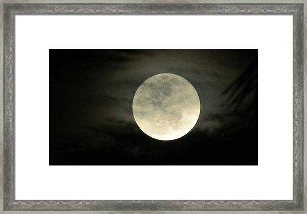 Mystical Moon Over Tampa Framed Print