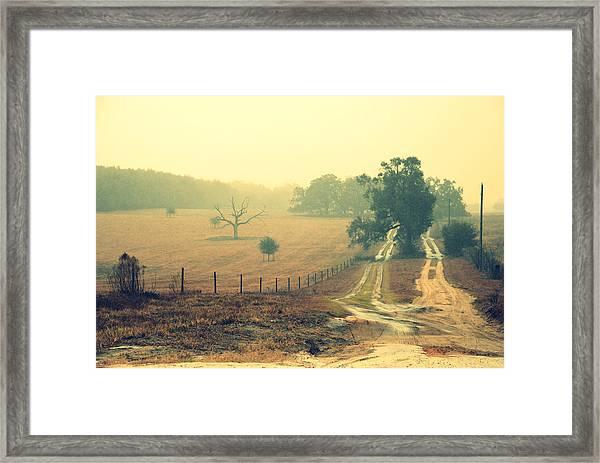 Naked Tree Farm Framed Print