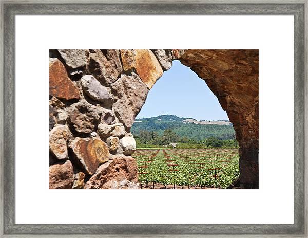 Napa Vineyard Framed Print
