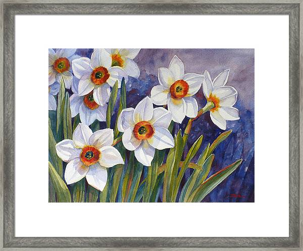 Narcissus Daffodil Flowers Framed Print