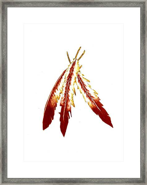 Native American Feathers  Framed Print