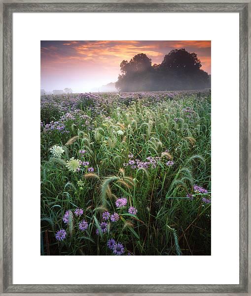 Native Prairie Sunrise Framed Print