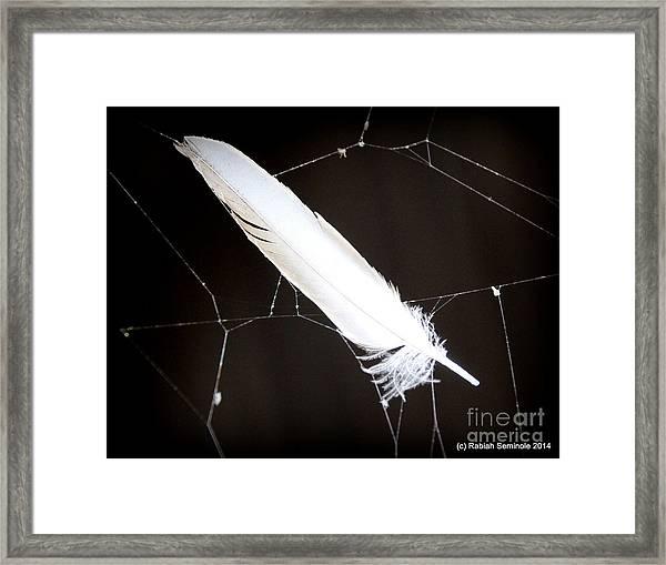 Natural Dream Catcher Framed Print