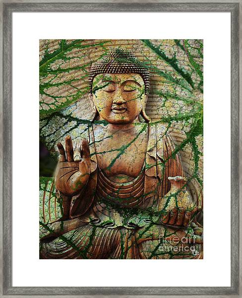 Natural Nirvana Framed Print