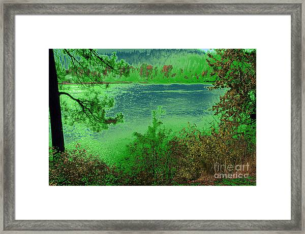 Natural Pride Framed Print