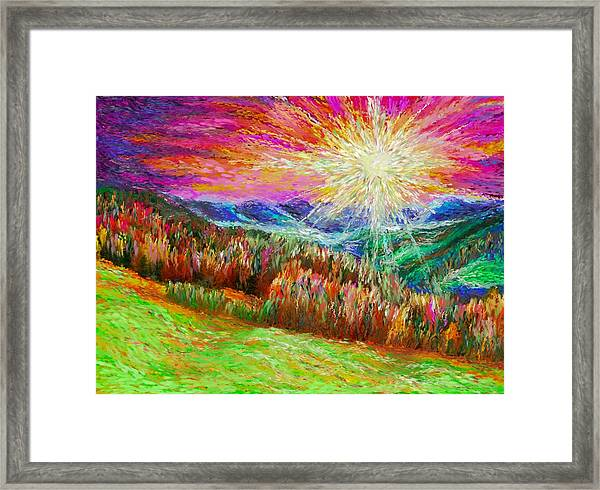 Nature 1  25 2015 Framed Print