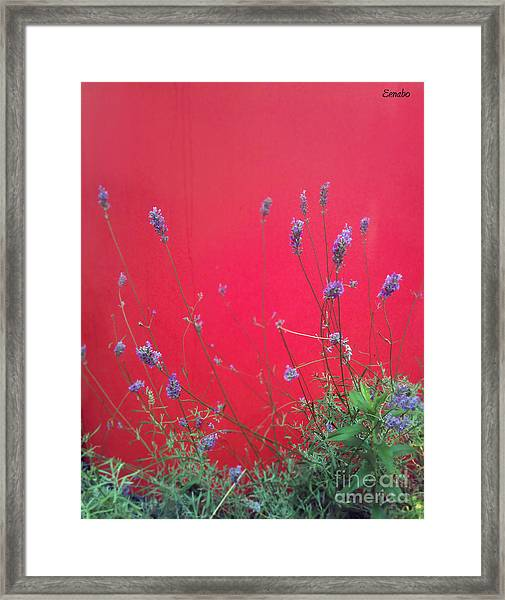 Nature And The City Framed Print