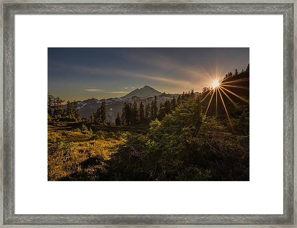 Nature Beams Framed Print