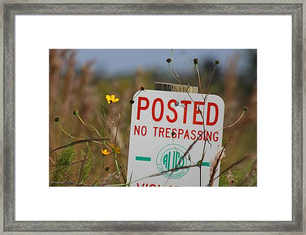Nature Posted Framed Print