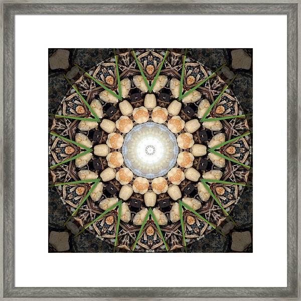 Nature Vortex Mandala #1 Framed Print