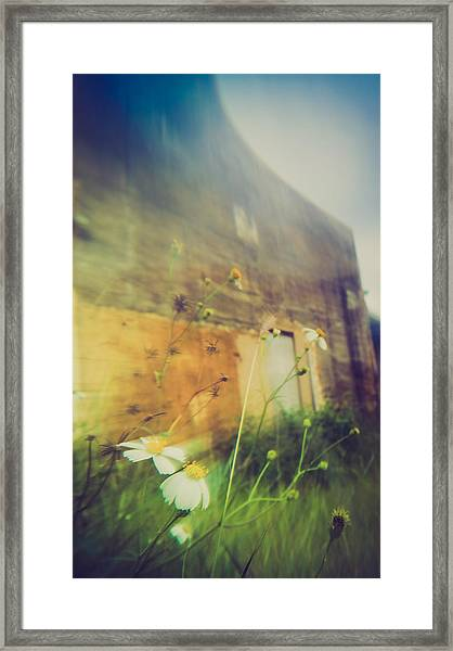 Nature's Convex - South Framed Print