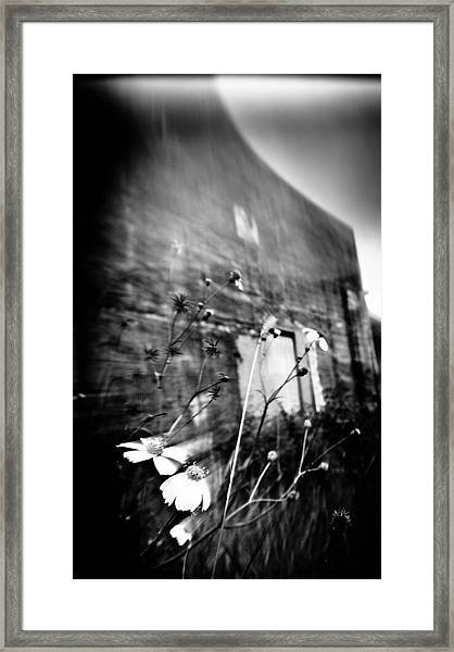 Nature's Convex - West  Framed Print