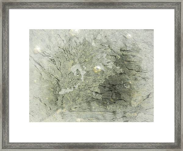 Natures Green Framed Print by Marcia Lee Jones