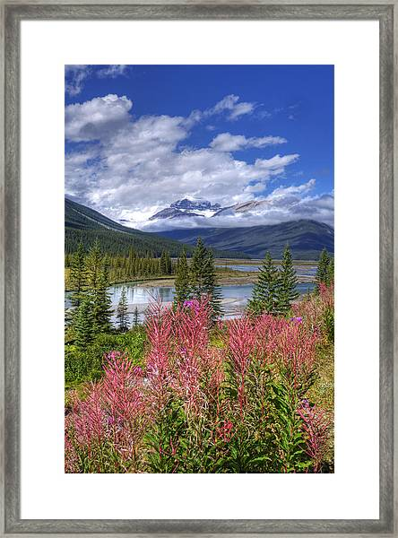 Natures Majesty Framed Print