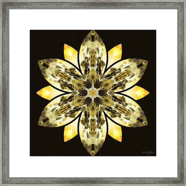 Nature's Mandala 57 Framed Print