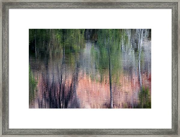 Nature's Mirror Framed Print