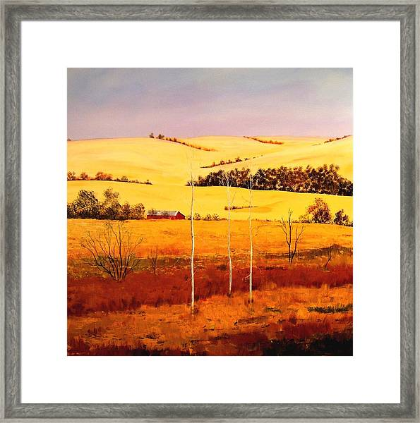 Nebraska Plains Framed Print