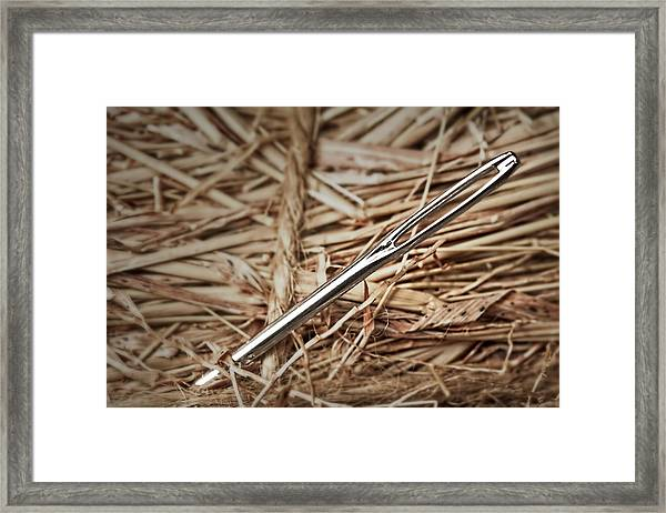 Needle In A Haystack Framed Print