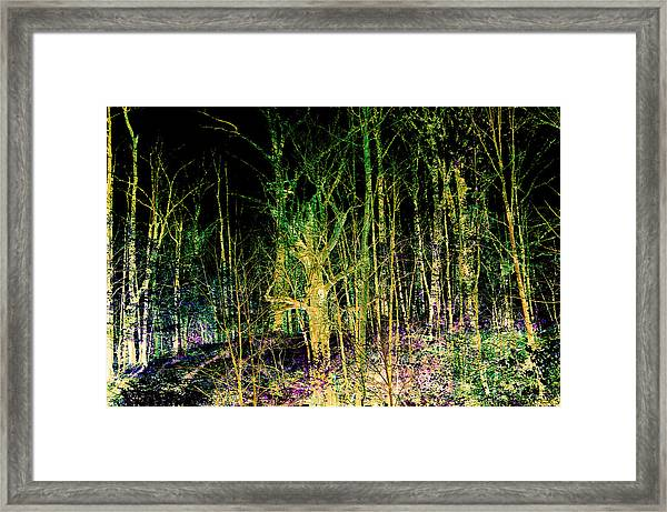 Negative Forest Framed Print