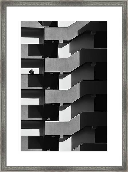 Neighbor Framed Print