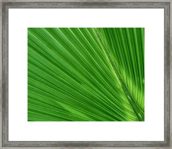 Neon Palm Reader Framed Print