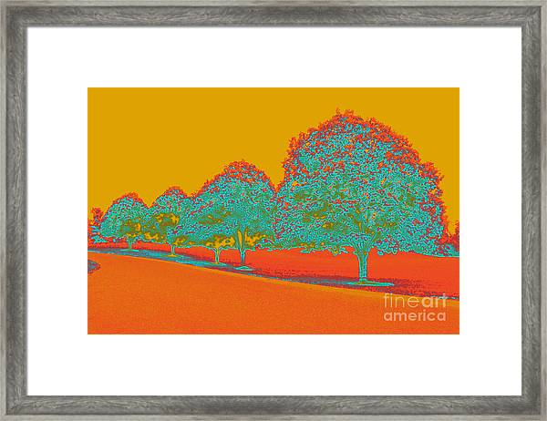 Neon Trees In The Fall Framed Print