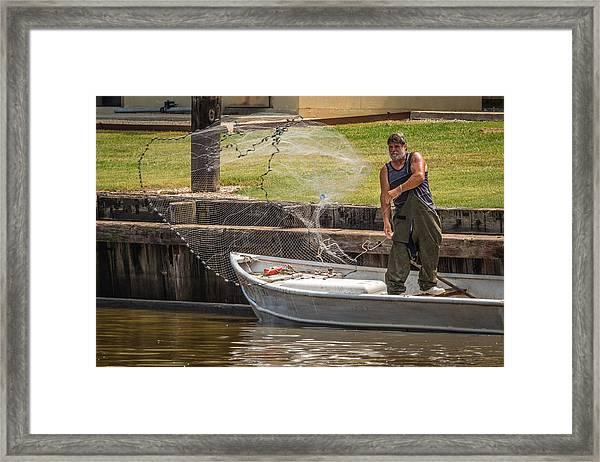 Net Fishing In Delcambre La Framed Print