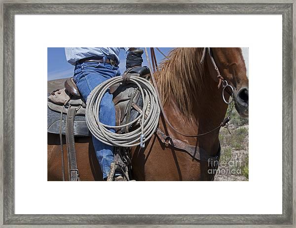 Nevada Cattle Ranch Framed Print